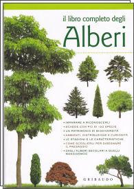 Il libro completo degli alberi for Nomi di alberi sempreverdi